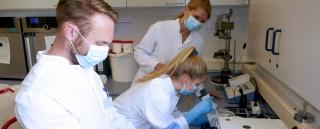 Auch die Identitätsprüfung von Arzneistoffen gehört zur Ausbildung eines Krankenhausapothekers. Al-mut Weygand (hinten im Bild) erklärt Jannis Lang und Leonie Woischnik, wie es geht.