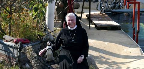 Schwester M. Canisia Corleis begrüßt den Paten-Pinguin des St. Bernward Krankenhauses Hildesheim im Erlebnis-Zoo Hannover.